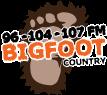 Bigfoot Wellsboro